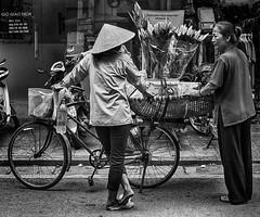 Selling Flowers (Hanoi, Vietnam. Gustavo Thomas © 2018) (Gustavo Thomas) Tags: seller flowers street streetphotography people vietnamese vietnam asia indochine hanoi bike traditional monochrome monoart bnw blackandwhite blancoynegro travel viaje voyager trip