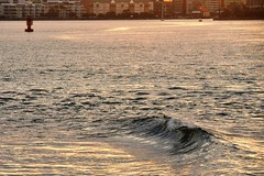 IOI_8312 Urban Wave Pool (Indah Obscura) Tags: ocean sea salt water city harbour miniature wave