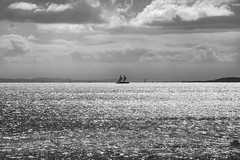 22 apr 2018 - photo a day (slava eremin) Tags: photoaday 365 1day dailyphoto bw blackandwhite monochrome blanconegro bianconero ship boat sea ocean gulf auckland nz newzealand