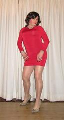 little red dress and cougar pumps - the front view (Barb78ara) Tags: littlereddress littledress tightdress bodycondress minidress redminidress nylon nylons nylonpantyhose pantyhose tannylon tanpantyhose pumps cougarprint cougarpumps highheels stilettoheels stilettohighheels heels