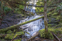 Home Again (writing with light 2422 (Not Pro)) Tags: angelfalls waterfall washingtonstate giffordpinchotforest nationalforest richborder sonya7