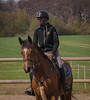 Isac on his horse (frankmh) Tags: horse people rider riding hittarp skåne sweden sport portrait