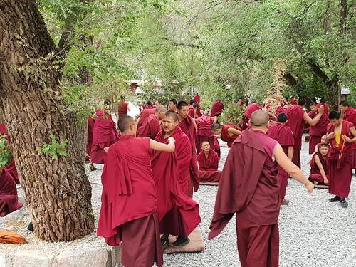 Debating of the monks at Sera Monastery, near Lhasa (4)