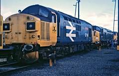 37114 (paul_braybrook) Tags: class37 englishelectric type3 diesel haymarket edinburgh scotland railway trains