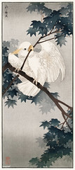 Yellow crested cockatoo in tree (1900 - 1940) by Ohara Koson n (1877-1945). Original from the Rijks Museum. Digitally enhanced by rawpixel. (Free Public Domain Illustrations by rawpixel) Tags: ray jubjang cockatoo pdoriginal animal pdproject21batch2 antique pdrijks art asian bird drawing illustration japan japanese koson name ohara oharakoson old paint vintage yellowcrestedcockatoo