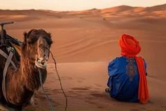 Morocco Desert Excursion - Day Tours (niceholidayphotos) Tags: