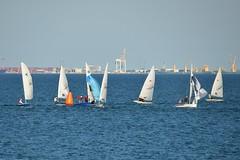 800_4582 (Lox Pix) Tags: queensland qld australia woodypoint hyc humpybongyachtclub winterbash foiling foilingcatamaran catamaran trimaran loxpix bramblebay boats