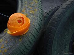 Dando vueltas sobre sí misma, quedó vacía de contenido…a veces pasa. (Marilina Ramón) Tags: bodegón abstracto naranja cáscara neumáticos líquenes curvas españa abstract still life orange shell tires lichens curves spain sonydscw210