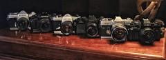 Vintage Film Cameras (Steve InMichigan) Tags: ricohsinglextls oylmpusompc pentaxhoneywellspotmatic yashicafri canonftql minoltax700 vintagefilmcameras 35mmfilmcameras cameragear vivitarmcwideangle28mmf28kominelens fotodioxomeoslensadapter
