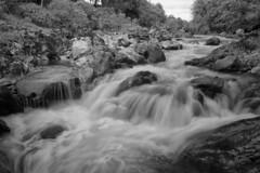 F7083493 F7083495 silver E-M5ii 14mm iso200 f8 1_6s (Mel Stephens) Tags: rocks solitude glen esk angus uk scotland aberdeenshire 20180708 201807 2018 q3 3x2 6x4 wide widescreen olympus mzuiko mft microfourthirds m43 714mm pro omd em5ii ii mirrorless bw black white silver efex water waterfall river landscape scape