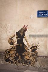 Chalon Sur saone - Street Art (serguei_30) Tags: art artiste artcomptemporain sergueidoublov streetart street romandoublet révolution revolte photographefrançais perfect graffiti graphiti graph canon70200mm canon canon6d tags tag urbanart urban urbain urbaine rue