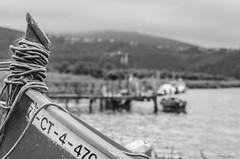 embarcadero 3 (tomas.alonso) Tags: bote agua ship water pier embarcadero
