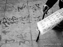 2018. Shanghái. (Marisa y Angel) Tags: 2018 guchengpark shanghái china chine cina prc peoplesrepublicofchina shanghai shànghǎi volksrepublikchina xangai zhōngguó shanghaishi cn