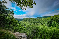 Bluestone River Overlook (Bob G. Bell) Tags: overlook bluestoneriver wv trees forest bobbell nature green