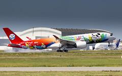 "F-WZFK // B-301D Airbus A350-941 - Sichuan ""Panda livery"" - CN 060 (Flox Papa) Tags: fwzfk b301d airbus a350941 sichuan pandalivery cn 060 toulouse toulouseblagnac lfbo tls when whale is looking landing pands pandas"