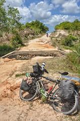 Into Mozambique.