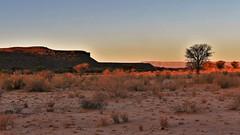 die letzten Sonnenstrahlen (marionkaminski) Tags: namibia afrika africa landscape paysage paisaje sonnenuntergang sunset coucherdusoleil savanne mountain montana montagne panasonic lumixfz1000
