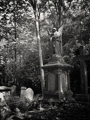 20180518-0231-Edit (www.cjo.info) Tags: 19thcentury 19thcenturyneogothic bw england europe europeanunion highgate highgatecemetery highgatecemeterywest london m43 magnificent7 magnificentseven magnificentsevengardencemeteries microfourthirds nikcollection olympus olympuspenfgzuikoautow20mmf35 olympuspenf penfmount silverefexpro silverefexpro2 unitedkingdom victoriangothic westerneurope angel animal architecture art blackwhite blackandwhite carving cemetery classiclens climbingplant death decay digital fauna flora girl gothic gothicrevival gravegraveyard ivy legacylens manualfocus monochrome mythicalcreatures overgrown people plant sculpture statue stone stonework tree victorian wing wingedcreature woman wood wooded