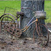 Forlorn Bicycle