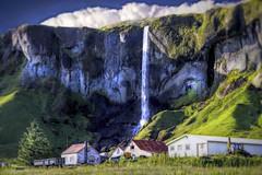 From Iceland. (Tóta. 27.12.1964.) Tags: landscape waterfall houses grass clouds sky iceland ísland