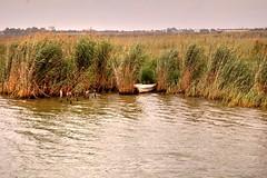 Deltebre (Enrica F) Tags: ebro deltebre tarragona catalunya nikon rio river delta