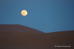 Rising Moon (nina.polareuth) Tags: moon fullmoon risingmoon sahara ergchebbi maroc morocco