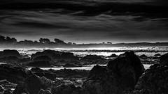 A5D_6611SE  Dusk at Asilomar (foxxyg2) Tags: beach sea seashore rocks water ocean pacific pacificocean mono monochrome bw blackwhite niksoftware dxo silverefex