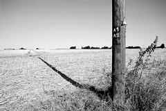 Pole Shadow (Retrocloud) Tags: nature field vintage wuppertal mettmann old agriculture landscape minolta film 35mm analogue grain adox
