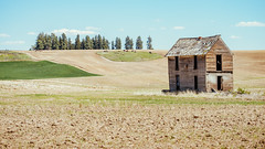 Dream House (Pedalhead'71) Tags: abandoned desert douglascounty easternwashington farmhouse homestead house landscape prairie rural washington wheat