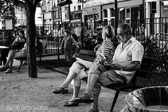 Enjoying the Golden Age ([nixon]) Tags: nikon monochrom bw blackandwhite city light summer children reading park citypark paris france