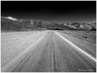- Silent Road -