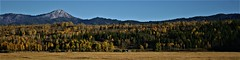 High Country Ranch (The VIKINGS are Coming!) Tags: wyoming ranch tetons pasture cattle animals bluesky autumn colors wilderness