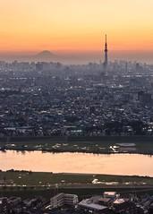 Ichikawa, Chiba. Oct 2017. (sandman_kk) Tags: tokyo japan cityscape dusk urban landscape river mountain fujisan tower buildings スカイツリー
