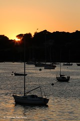River Sunset (Kernow Rail Phots) Tags: sunset river cornwall kernow flushing falmouth penryn boats water silhouette sunny sun yacht trees golden sky tranquillity saturday 7th july 2018