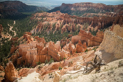 Bryce Canyon 02 (Brandon_Smith) Tags: landscape nationalpark united states utah bryce brycecanyonnationalpark canon5dmkiv