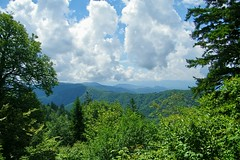 Appalachian Trail (greer82496) Tags: appalachian great smoky mountains