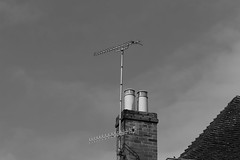 Needs Upgrade (WorcesterBarry) Tags: blackwhite bnw buildings roof tv sky street streetphotography house worcester weather bricks aerial chimney pots clouds