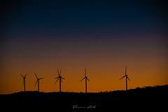 Just before dawn (Theresa Hall (teniche)) Tags: australia bungendore canberra newsouthwales nikond750 tarago taylorcreekroad teniche theresahall bloodmoon fullmoon lunareclipse nightphotography nightsky windturbine windturbines