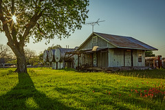 Old Fuel Depot (Mike Schaffner) Tags: building depot fuel gas gasoline morning pumps sunburst tanks tree wildflowers texas unitedstates us