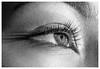 Macro Eye (mariolka3) Tags: eyelid eyebrow makeup nikond810 monochrome bw nikkormicro105 macrophotography macro people eye