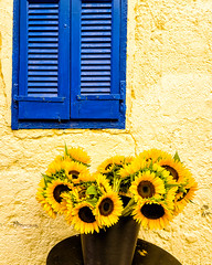 Sunflower (Kevin R Thornton) Tags: galaxy crete mediterranean travel stilllife architecture mobile city samsung sunflower greece chania s6 creteregion gr