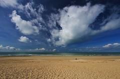 Hands to the sky, I am a dreamer (Nicky@Photography) Tags: nature eau océan ciel nuage plage plagedupetitsergent leboisplageenré îlederé charentemaritime france