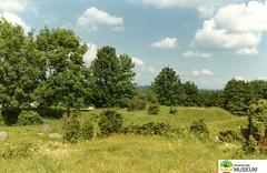 tm_4867 - Lenaborg (Tidaholms Museum) Tags: färgat positiv landskap skog borg