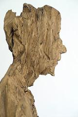 Skulpturen von Andreas Kuhnlein (jazzfoto.at) Tags: andreaskuhnlein skulptur skulpturen holzskulptur holzskulpturen kunst ausstellung skulpturenausstellung aldersbach klosteraldersbach bildhauer motorsäge totholz zerklüfteteoberfläche hartholz ulme eiche esche markuslackinger sony sonyrx100m3 rx100m3 rx100miii sonyrx100iii sonydscrx100iii dscrx100iii portrait retrato portret bayern bavaria deutschland germany