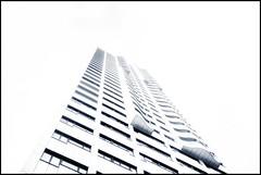 into the light (TheOtherPerspective78) Tags: architecture architektur modern tower monochrome monochrom mono highkey wideangle ww vienna wien reichsbrücke balcony windows fenster hochhaus skyscraper theotherperspective78 canon eos5diii lines modernliving lifestyle tse24