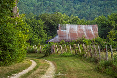 Ozark Barn (Wits End Photography) Tags: abandoned barn missouri woods field dirtroad ozarks farm decay road places fence barrier boundary country countryside decayed dirt discarded drive farland fields forgotten forsaken landscape neglected old rejected roadway route rural track