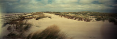 The dunes (Rosenthal Photography) Tags: portra160 portra kodak 20180708 dänemark ff120 color meer lochkamera 6x17 houvig realitysosubtle6x17 nordsee kodakportra160 asa160 epsonv800 pinhole mittelformat urlaub c41 strand analog dünen sea northsea summer denmark beach dunes realitysosubtle rss mediumformat rollfilm