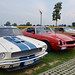 Car & Motorcycle Show_05