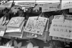 Japan 2018 on 35mm film (adi_stoica2001) Tags: japan 日本 nippon film x700 kodak tmax 100 35mmfilm bw blackandwhite kibune