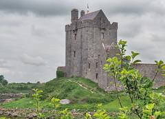 Dunguaire Castle (Astaken) Tags: olympus omd em5 43 lens zuiko digital zd ed swd 1260mm